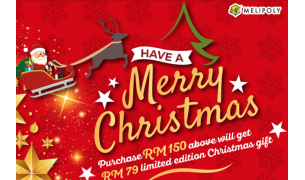 Year End Christmas Promotion