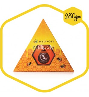 Melipoly Apis Cerana Honey (Malaysia Rainforest) 280GM