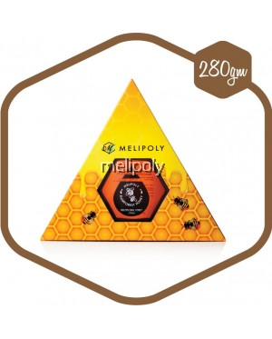 Melipoly Multiflora Honey 280GM