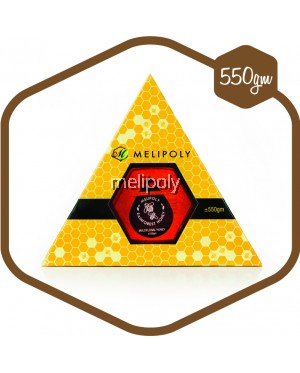 Melipoly Multiflora Honey 550GM