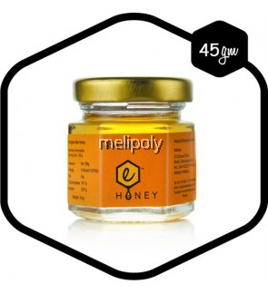 Melipoly Stingless Bee Honey 45GM