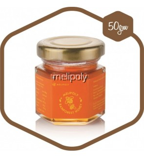 Melipoly Multiflora Honey 50GM