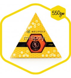 Melipoly Apis Cerana Honey (Malaysia Rainforest) 550GM