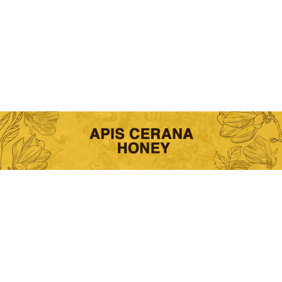 Apis Cerana Honey